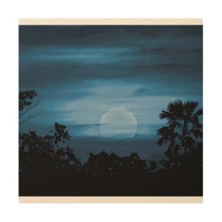 Moonscape Silhouette Ilustration Wood Print