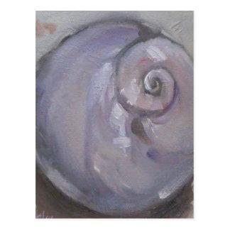 Moonshell beach sea shell beach snail postcard