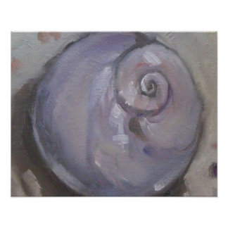 Moonshell beach sea shell beach snail poster