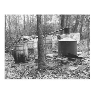 Moonshine Still in the Woods, 1931 Postcard