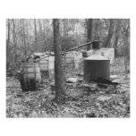 Moonshine Still in the Woods, 1931. Vintage Photo Poster