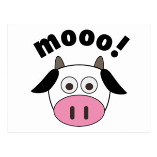 Mooo! Cow Postcard