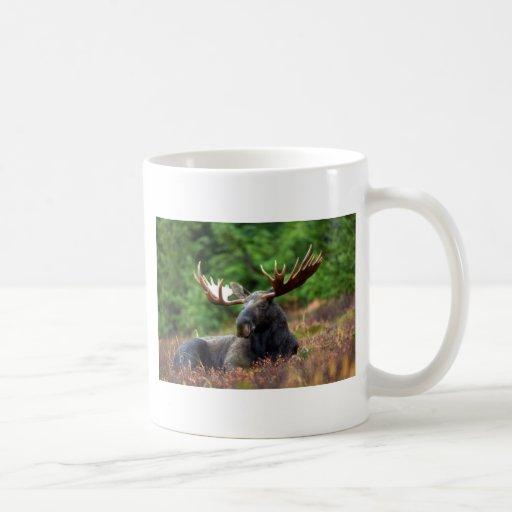 Moooose! Coffee Mug