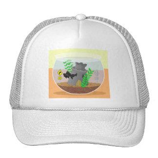 Moor Curves Ahead Hat
