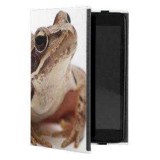 Moor Frog - Rana arvalis Cover For iPad Mini