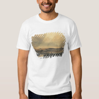 Moor with windmill shirt