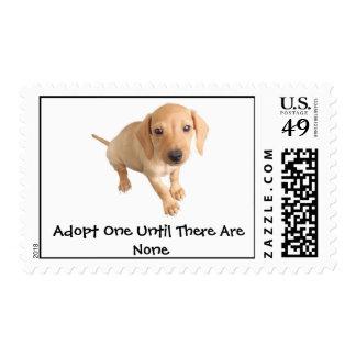 Moore Humane Society Postage Stamp