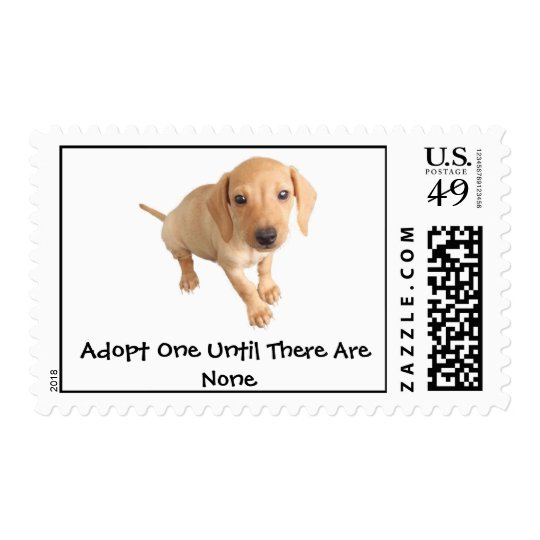 Moore Humane Society Postage Stamp