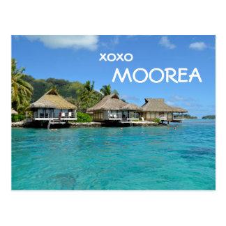 Moorea bungalows with text: 'xoxo Moorea' Postcard