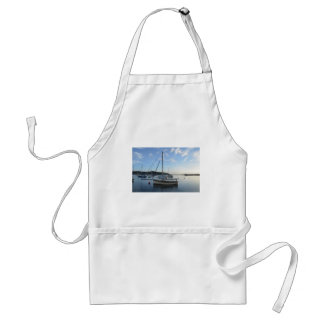 Moored sailing cutter at dawn aprons
