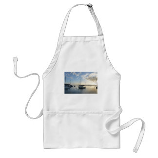 Moored yacht at dawn. adult apron