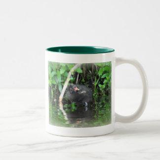 Moorhen Chick on Brambles Two-Tone Coffee Mug