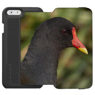 Moorhen iPhone 6/6s Wallet Case