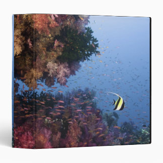 Moorish Idol Binder