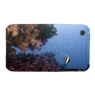 Moorish Idol iPhone 3 Case-Mate Cases