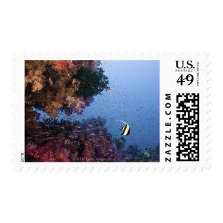 Moorish Idol Postage Stamps