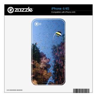 Moorish Idol iPhone 4S Decals