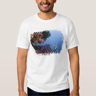 Moorish Idol T Shirt