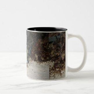 Moorish Idol Two-Tone Coffee Mug