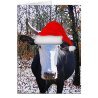 Moorry Christmas from Funny Heifer Cow Card