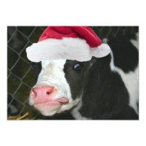 Moory Cow Christmas Invitation