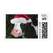 Moory Cow Christmas Postage