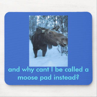 moose2, and why cant I be called a moose pad in... Mouse Pad