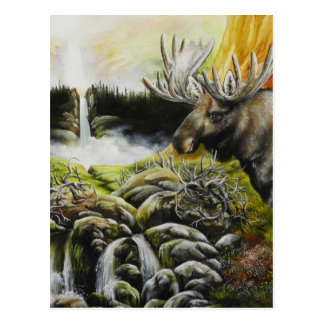 Moose~ A Painting on customizable products Post Card