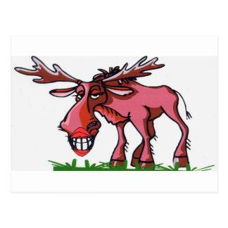 Moose Alaska Postcard