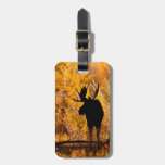 Moose (Alces Alces) Bull In Golden Willows 2 Tag For Luggage