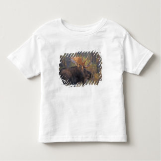 moose, Alces alces, bull in Grand Teton Toddler T-shirt