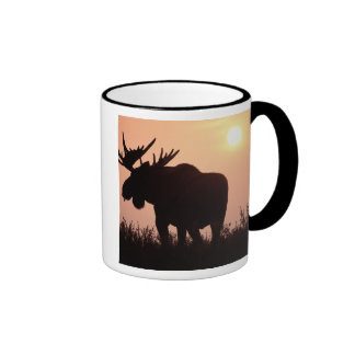 moose, Alces alces, bull with large antlers, Ringer Mug