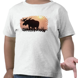 moose Alces alces bull with large antlers Tshirt