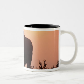 moose, Alces alces, bull with large antlers, Two-Tone Coffee Mug