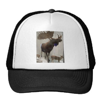 Moose (Alces alces) Trucker Hat