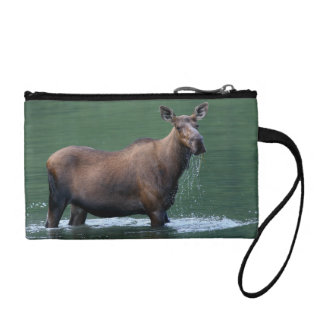 moose and emerald water coin wallet