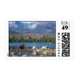 Moose and Mount Katahdin Stamps