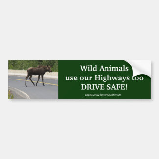 Moose Animal Protection Road Safety Bumper Sticker