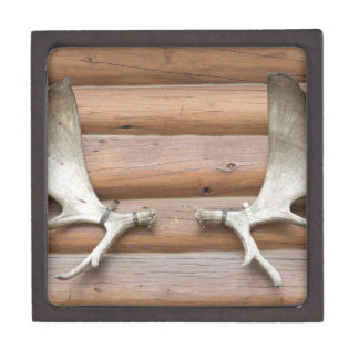 Moose Antlers Jewelry Box