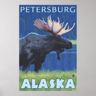 Moose at Night - Petersburg, Alaska Poster