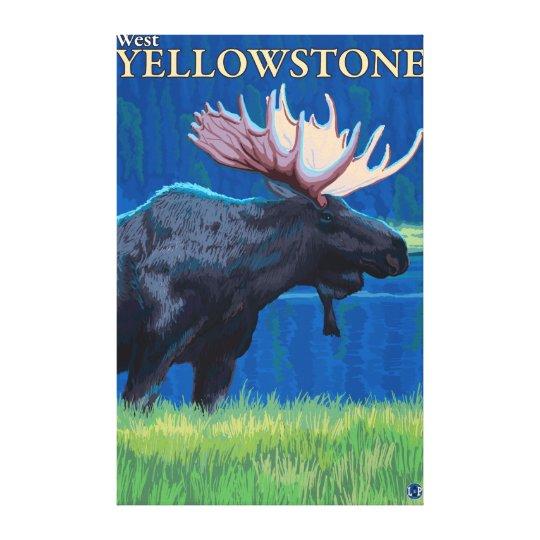 Moose at Night - West Yellowstone, Montana Canvas Print