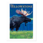 Moose at Night - West Yellowstone, Montana Postcard
