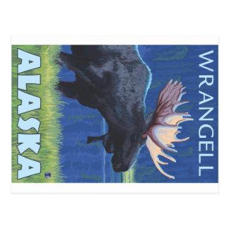 Moose at Night - Wrangell, Alaska Postcard