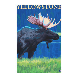 Moose at Night - Yellowstone National Park Stretched Canvas Prints