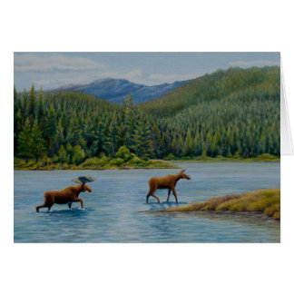 Moose at Oxbow Bend Card