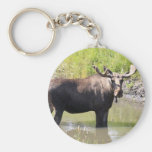 moose basic round button keychain