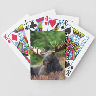 Moose Bicycle Playing Cards