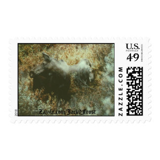 Moose Boulder Creek, Zazzle.com/Jack9Frost Postage
