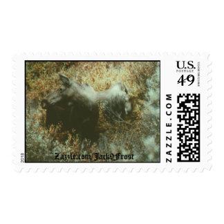 Moose Boulder Creek, Zazzle.com/Jack9Frost Stamp