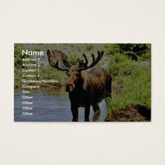 Moose Business Card